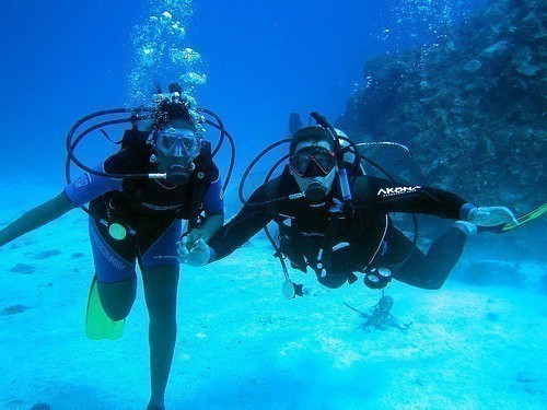 Best scuba diving in seychelles travel tips - Best dive trips ...