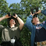 Chile Bird Watching – A Wonderful Experience