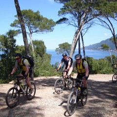 Here's What You Need To Know About Mountain Biking In Mallorca, Spain