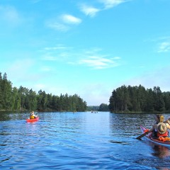 Top Kayaking And Canoeing Opportunities To Enjoy In Sweden