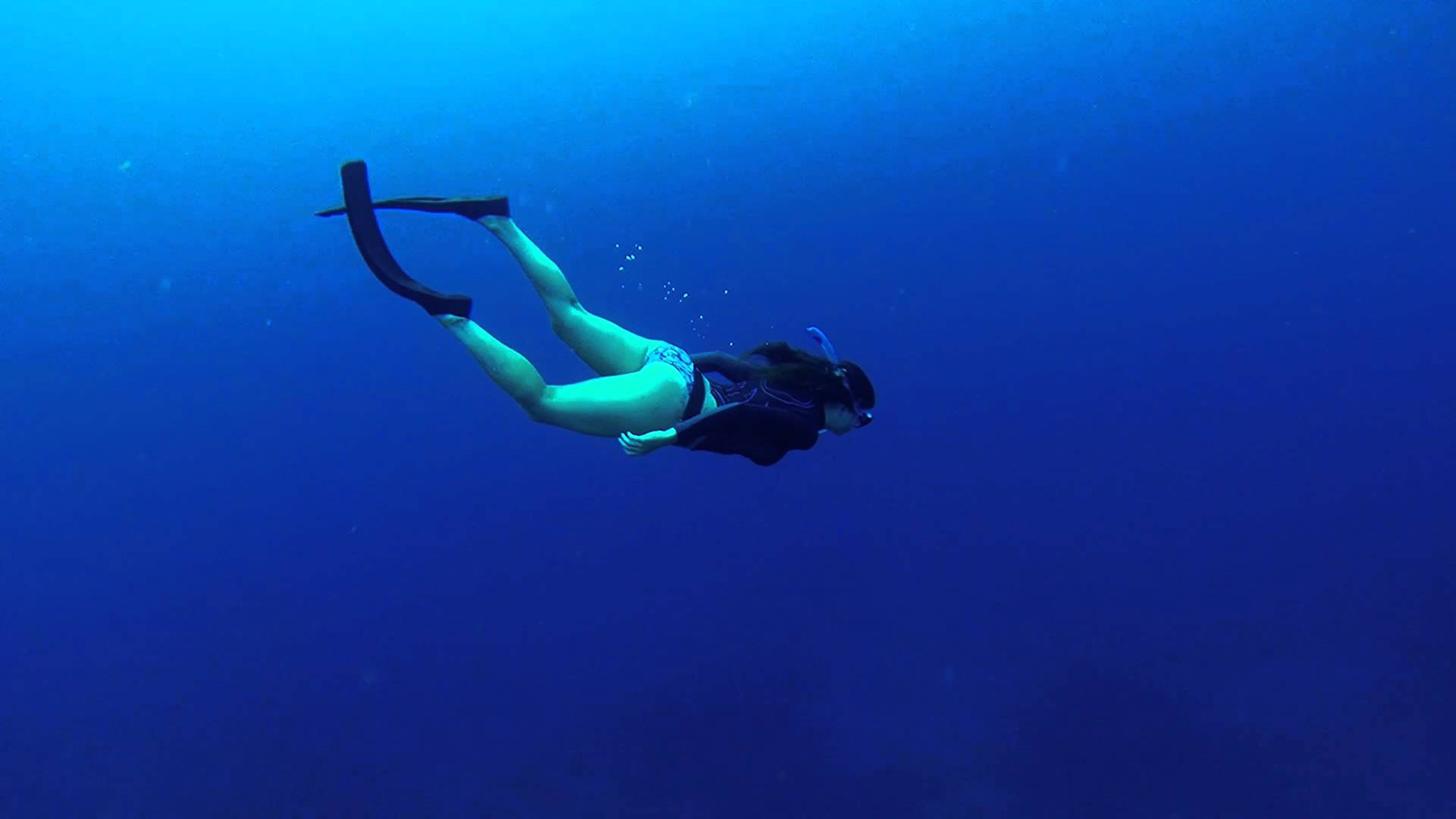 Free Diving In Bonaire In The Dutch Caribbean • Travel Tips