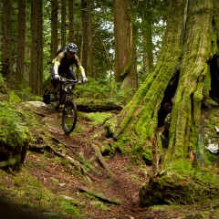 Mountain Biking In North Shore, Vancouver