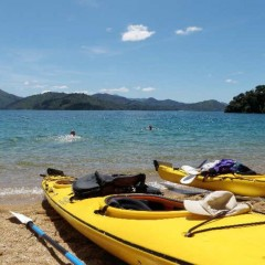Best Kayaking Destinations In New Zealand
