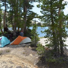 4 Great Camping Spots Close To Sacramento