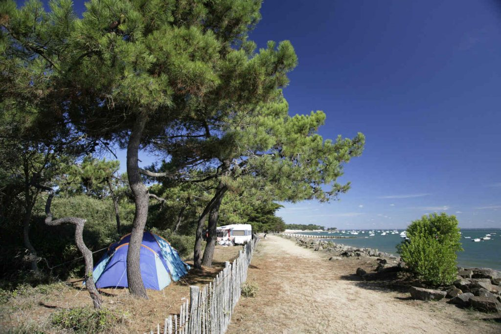 French camping