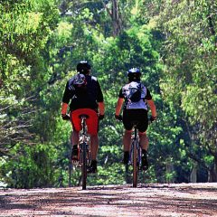 Victoria Mountain Biking Trails To Experience