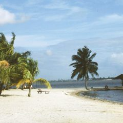 3 Amazing Places And Activities In Cote d'Ivoire You Can't Say No To
