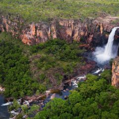 Top 6 Activities To Enjoy In Kakadu National Park, Australia