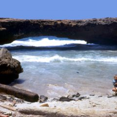 Visit Aruba's Best Land Based Attractions