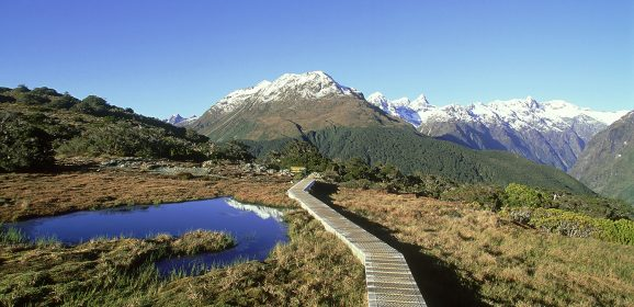 Recommended New Zealand Hiking Destinations
