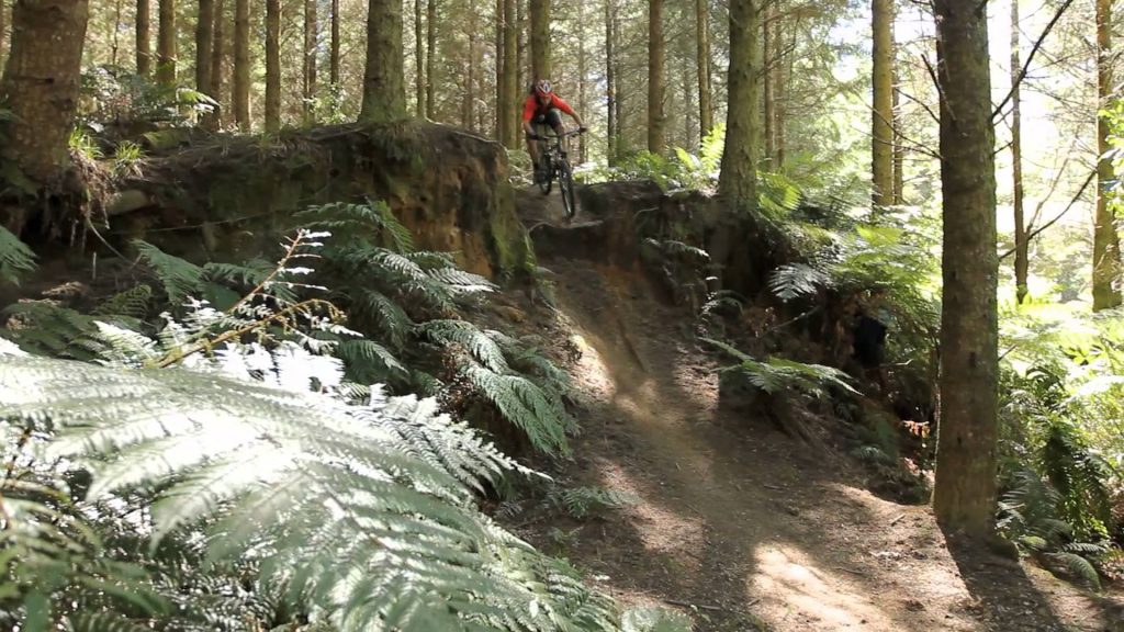 mountain-biking-in-rotorua-new-zealand