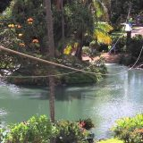 Tips For Ziplining In Maui
