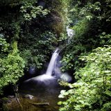 Amazing National Parks And Reserves In Costa Rica