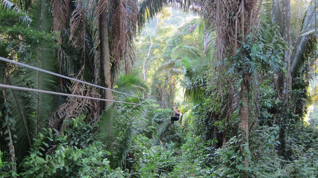 Zip-lining & Water Rappelling In Belize