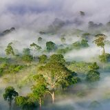 7 Wonderful Wildlife Watching Spots To Visit In Asia