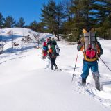 Best Snowshoeing Destinations In Canada