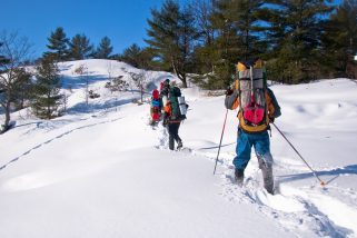 Best Snowshoeing Destinations In Canada